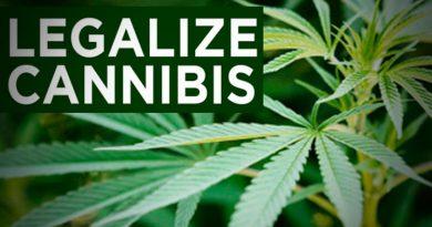 Police secure injunction to halt marijuana legalization demo