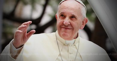 Pope Francis has apologised for slapping a woman's hand